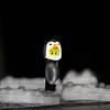 Penguin boy 2