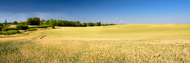 Farmland in Leicestershire