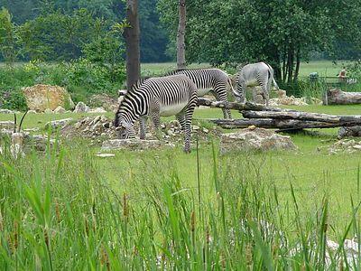 2004-06-04_01459_Zoo Leipzig