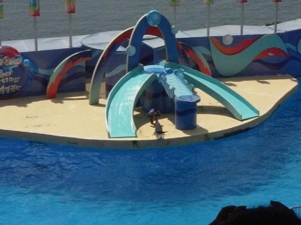 Video of Ocean Park