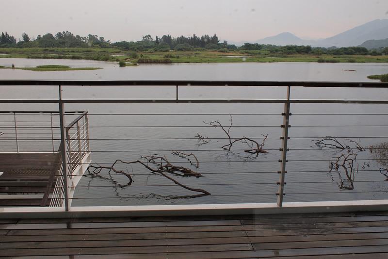Photo of Hong Kong Wetland Park
