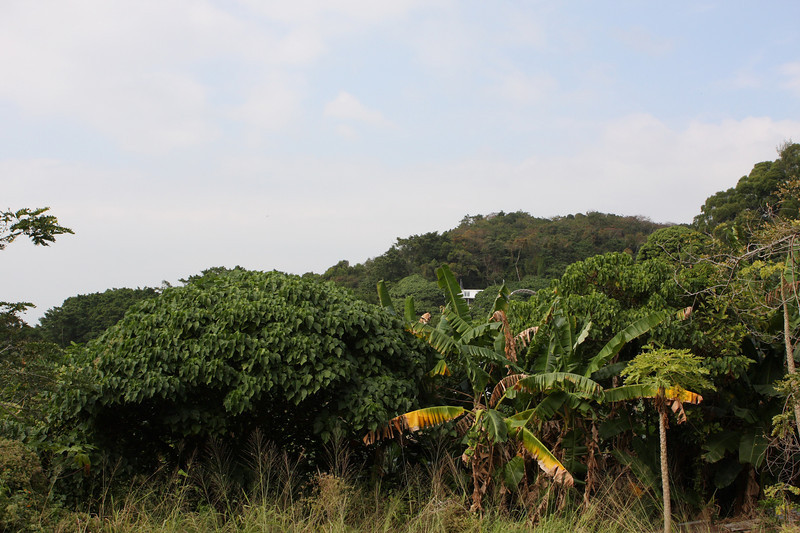 DPP_0055 <br /> Photo of Lamma Island