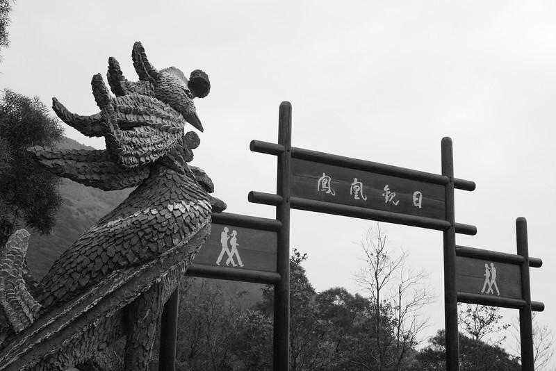 DPP_0015 <br /> Photo of Wisdom Path