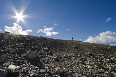 mountain with sunrays and lonely hiker - mount whistler, jasper national park, canadian rockies, alberta - adobe RGB