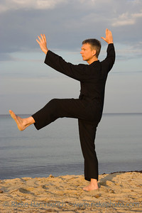 tai chi - posture kick with left heel - art of self-defense - adobe RGB