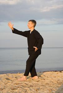 tai chi - posture step back dispatch monkey - art of self-defense - adobe RGB