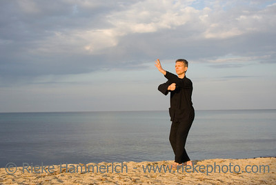 tai chi - posture fist under elbow - art of self-defense - adobe RGB