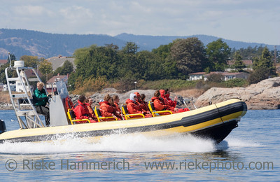 People enjoying Ride with Inflatable Boat - Victoria, Vancouver Island, British Columbia, Canada