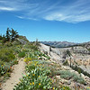 Great ridge walk after passing Twin Peaks, where the Tahoe Rim Trail branches east to Tahoe City.