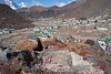 Khumjung and a 'waste handling area' in the foreground.