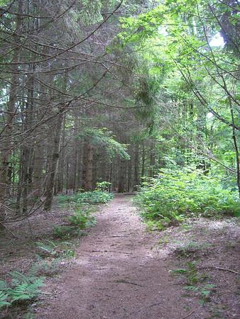 2011 Appalachian Trail Thru Hike
