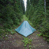 Old roadbeds can make for good camp sites.
