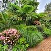 Lennox Head Garden