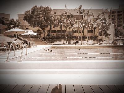 Pool Sepia
