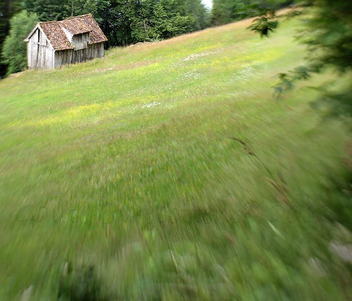 Gamal slåtteeng og løe på Hammar, Randabygda (Old barn and meadow before the haymaking.)
