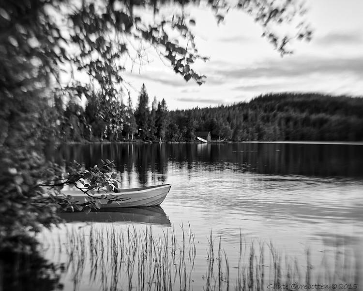 Midtsommaridyll (Malsjøen; biletet er spegelvendt).<br /> Midsummer night.