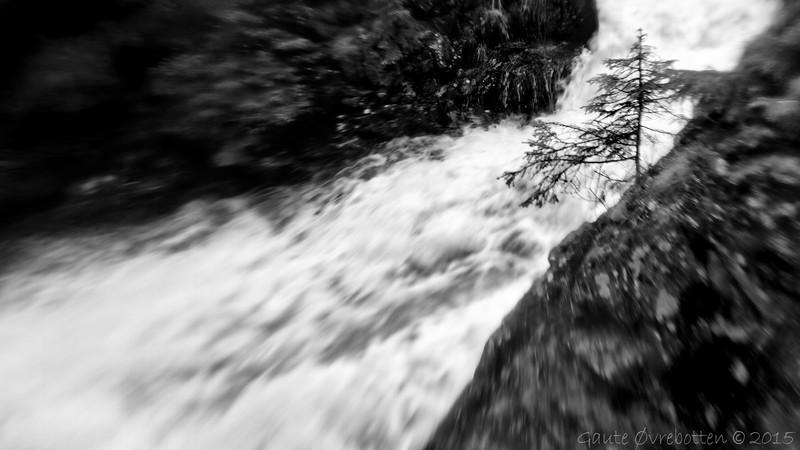 Skjerva etter regnet.<br /> Flooding brook.