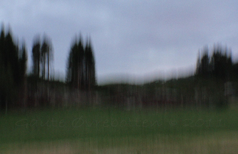 Julikveld [Vertikal panorering] (Evening light; vertical pano)