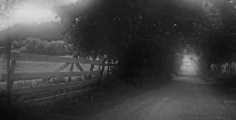 Kongevegen ved Majors-Alm <br /> The old main road (Lensbaby Zoneplate optics)