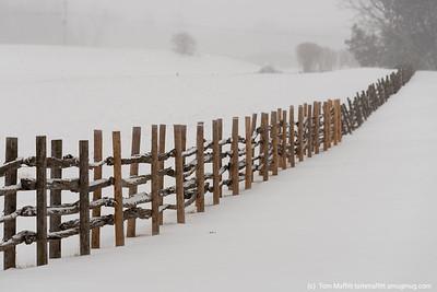 """""""Winter's Firm Grip"""""""