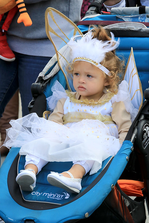 . The annual Halloween parade in Leominster was held on Saturday, October 20, 2018 in down town around Monument Square. The business were handing out candy to all the kids and the common was cover in tables with many politicians. Enjoying the parade from her stroller was Peyton Venturi Rivera, 1, from Leominster. SENTINEL & ENTERPRISE/JOHN LOVE