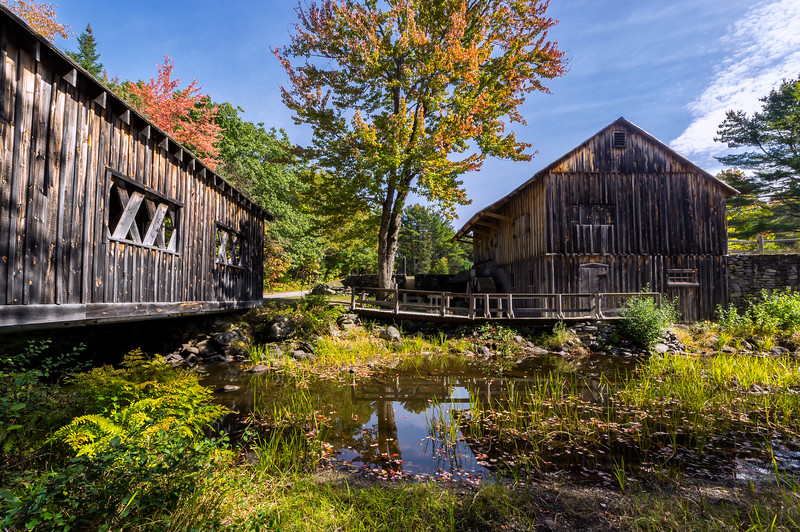 Leonard's Mills Covered Bridge and Mill