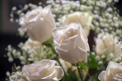 White roses, baby's breath