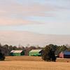 Green barns in winter