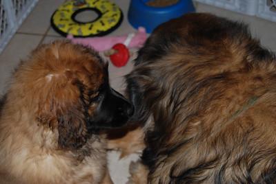 Kellie whispers something...mmmm...wonder what she said.