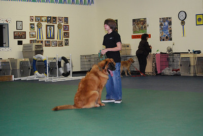Connor and Kellie at obedience class.  This class does intro to agility and a lot of trick stuff.