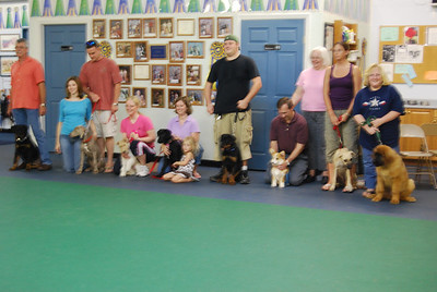 "our class from left to right... rottie, weimer, terrier, lab, rottie, corgi, curr, leo ""Kellie"""