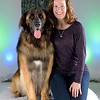 """0991-Family-Dog-Holidays-2016-Jerry-and-Lois-Photography (8x10) (WEB).jpg<br /> <br /> Holiday portraits 2016, Family Dog Training Center (Kent, WA)<br /> <br /> © Jerry and Lois Photography<br /> All rights reserved <br /> <a href=""""http://www.jerryandlois.com"""">http://www.jerryandlois.com</a>"""