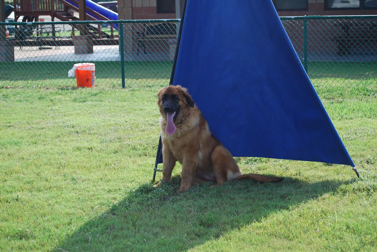 Kellie found the shade!!
