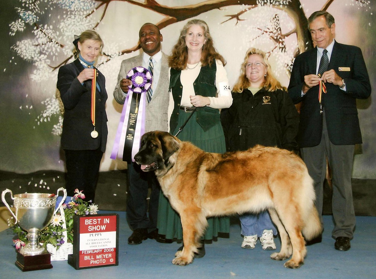 Sienna wins her first BIS...I'm sure of many to come!!!!  All the judges loved her.  (once again...what the heck am I looking at???...oh well, all that matters is the dog!!)