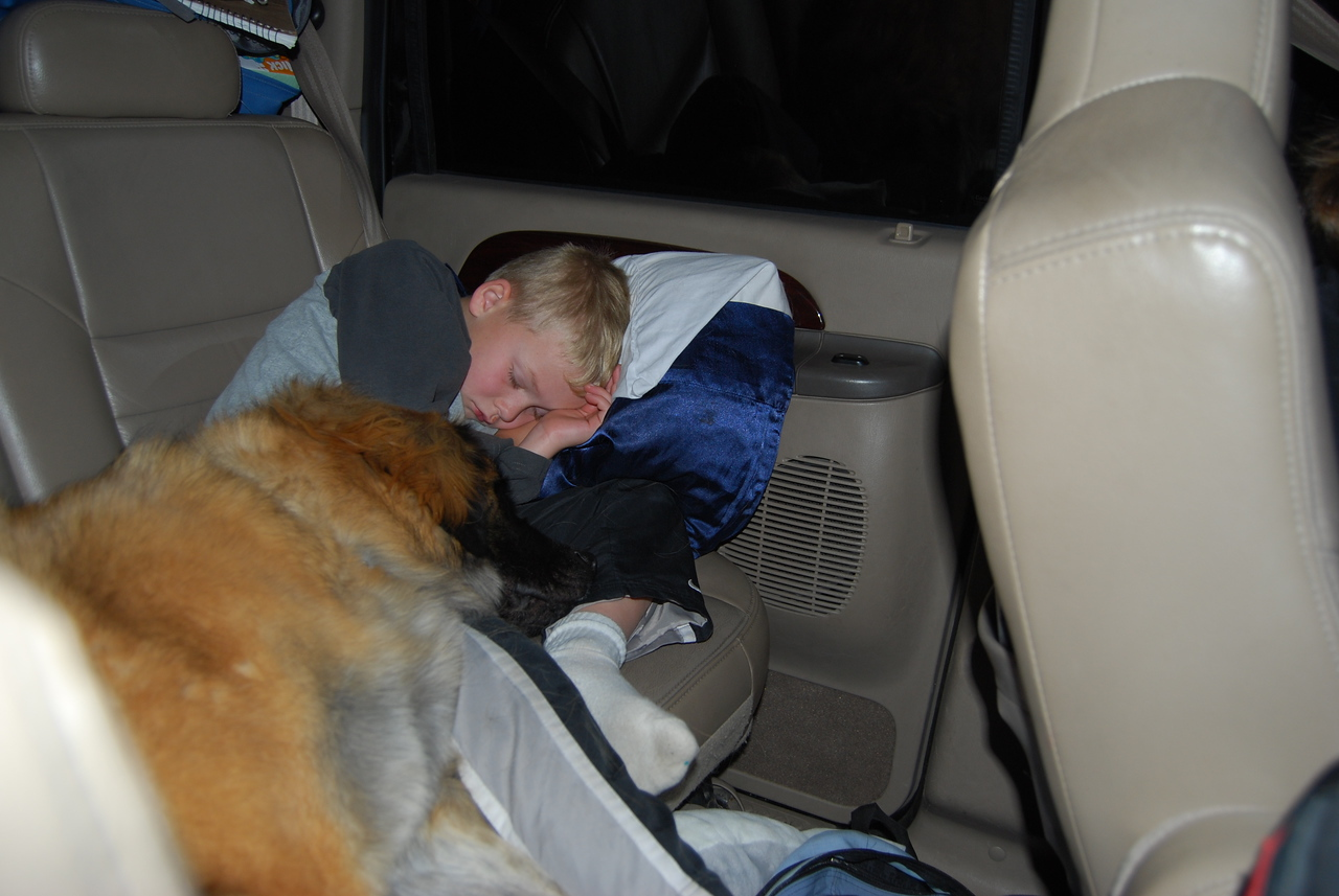 awwwww...nothing like a boy and his dog asleep