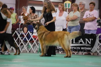 2010 04, 9-11 UKC Premier in Indiana