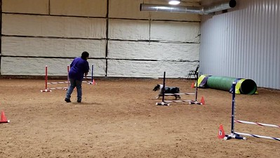 Darcie and Chaya 1st Jumpers run