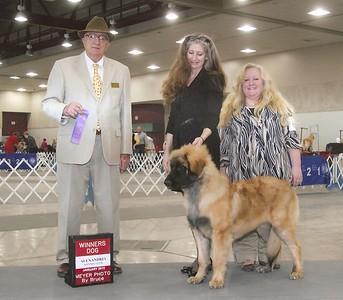 Revere - winners dog