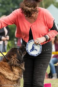2016_06-12 Leonberger Honden Club Nederland 50 jaar-9009