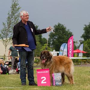 2016_06-12 Leonberger Honden Club Nederland 50 jaar-8399