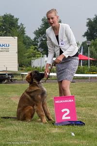 2016_06-12 Leonberger Honden Club Nederland 50 jaar-8353