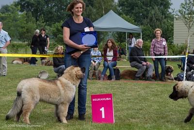 2016_06-12 Leonberger Honden Club Nederland 50 jaar-8336