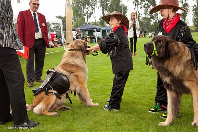 Kind-hondshow 13