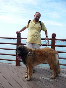 Estel now lives in Singapore.  She is the luckiest dog ever!!