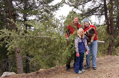 Amber and family getting Christmas tree.