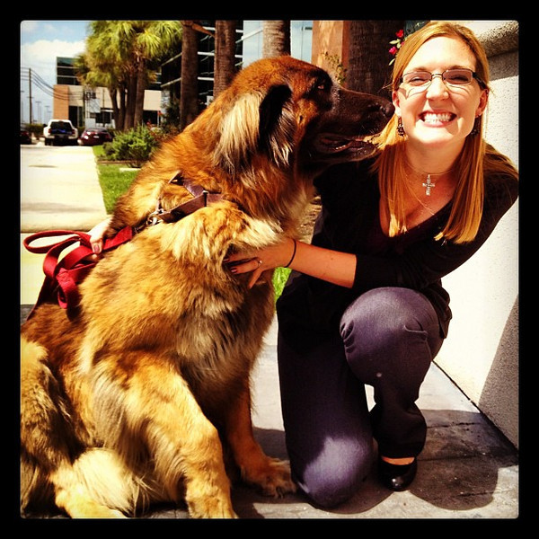 Pregers Storm came to work to visit some friends (Rebecca Orth)