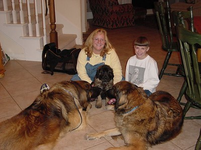 Wendy, Connor and the dogs