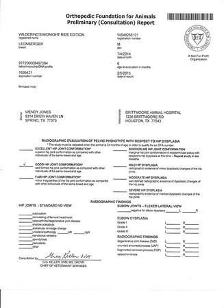 Health Certificates - Pedigree - etc