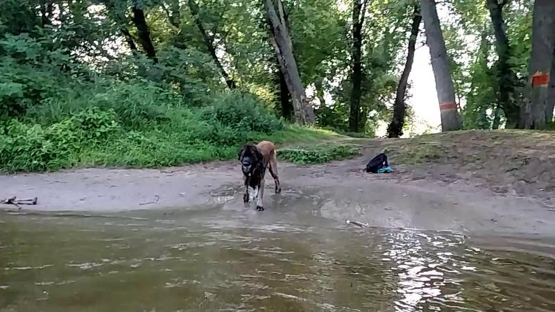 Vikahn plays water ball