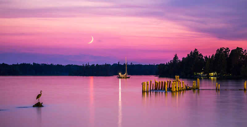 Heron, Sailboat and a Crescent Moon on Hessel Bay
